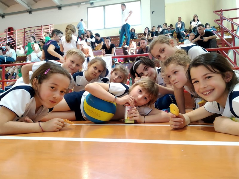 Minivolley_4.jpg
