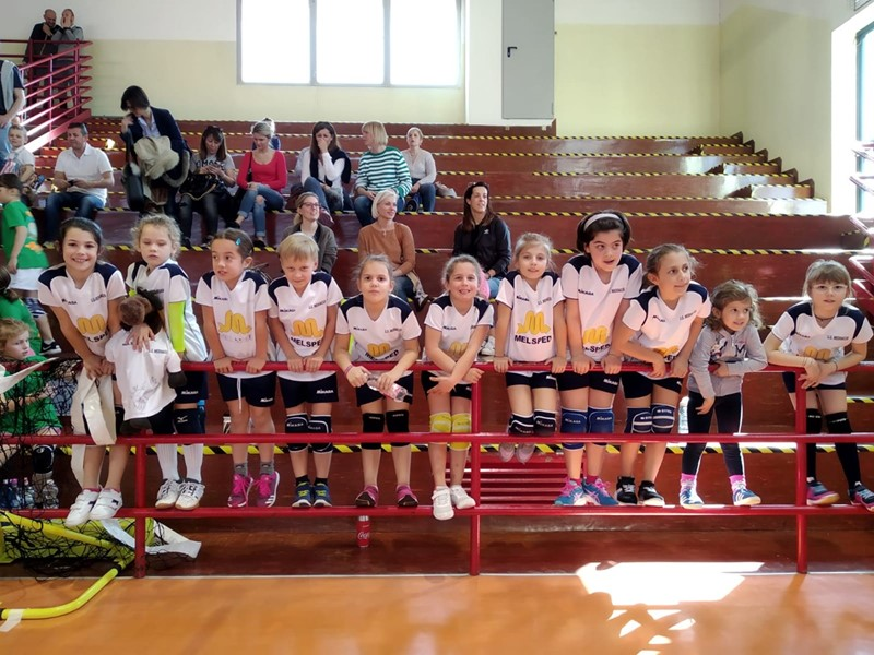 Minivolley_6.jpg